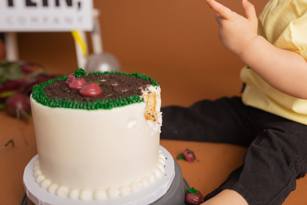 Wonderful smash cake with The Office theme covered in beets for baby Dwight Schrute in Dallas Tx